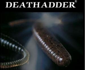 DEARH ADDER3