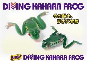 BABY DIVING KAHARA FROG 2