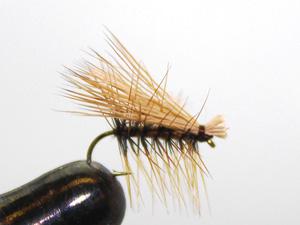 l2-fly01
